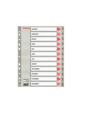 Separatore in PPL grigio mensile GEN-DIC f.to A4 ESSELTE